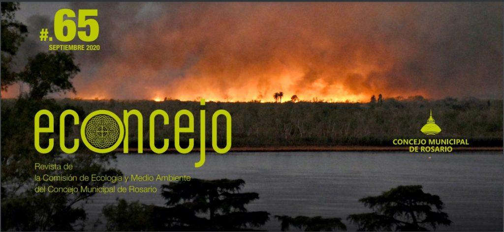 Tapa de la revista Econcejo. La imagen muestra los incendios en las islas entrerrianas del Delta del Paraná, frente a la costa de Rosario